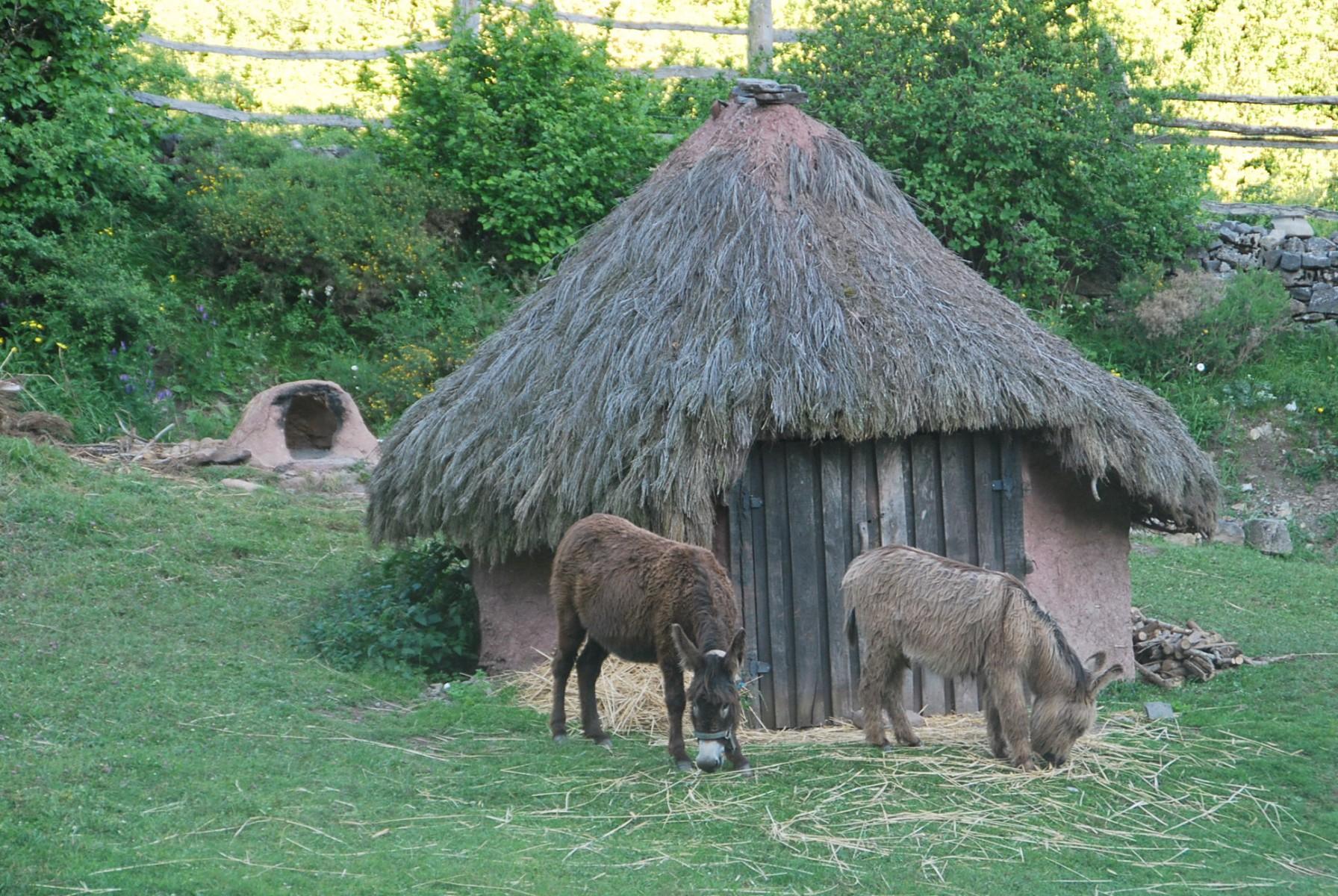 reinosa-poblado-cantabro-argueso