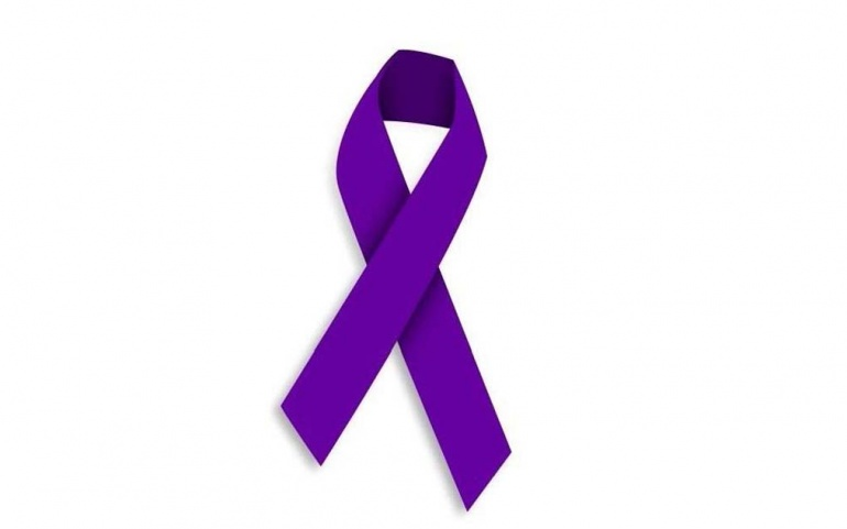 Actividades y una concentración para conmemorar el Dia Internacional de la Eliminación de la Violencia de Género