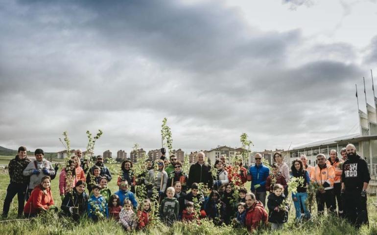 Plantación de árboles autóctonos